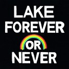LAKE - Forever or Never (preorder)