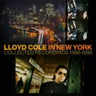 Lloyd Cole – Lloyd Cole in New York (7-LP boxset)